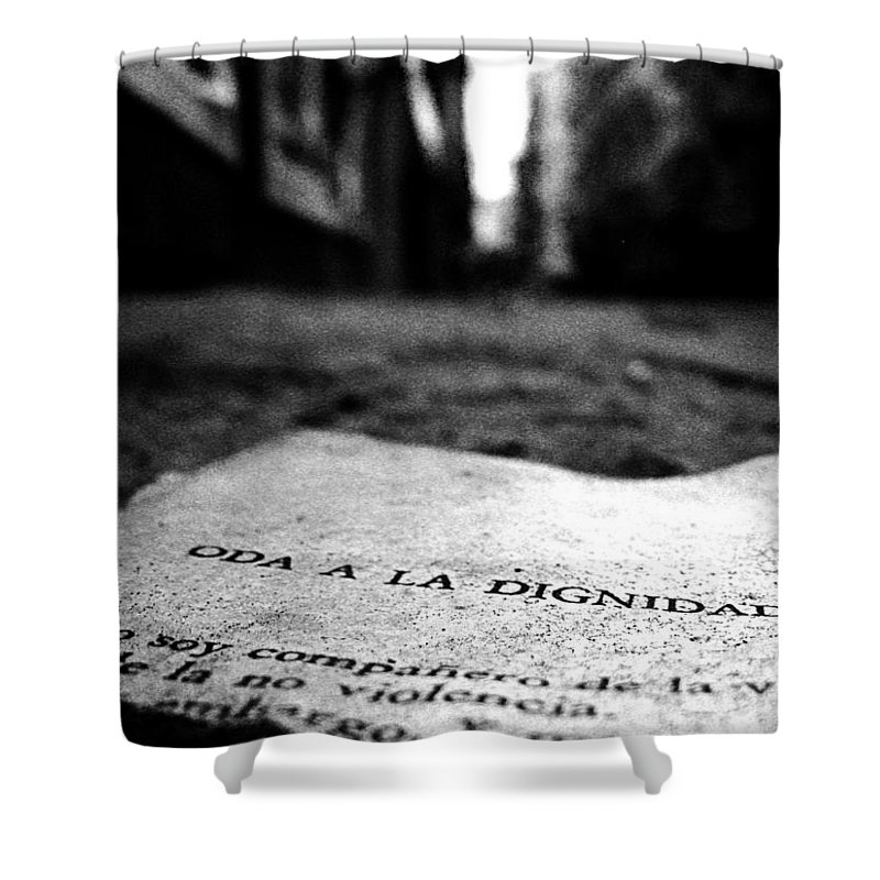 Buenos Aires Shower Curtain featuring the photograph Oda A La Dignidad by Osvaldo Hamer