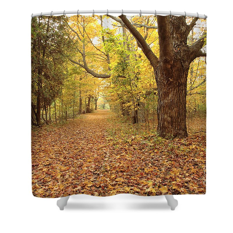 New England Shower Curtain featuring the photograph Odiorne Point State Park - Rye New Hampshire by Erin Paul Donovan