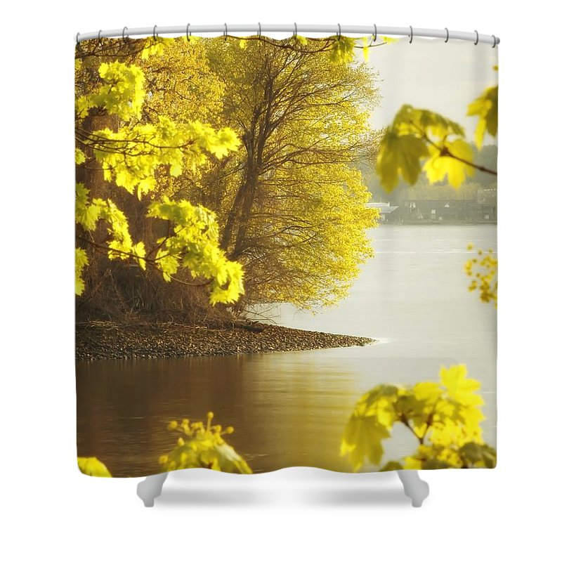 Trees Shower Curtain featuring the photograph Off The Trail From Beacon by Chet B Simpson