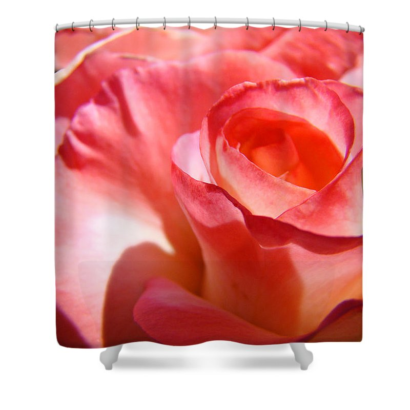 Rose Shower Curtain featuring the photograph Office Art Pink Rose Spiral Roses Giclee Prints Baslee Troutman by Baslee Troutman