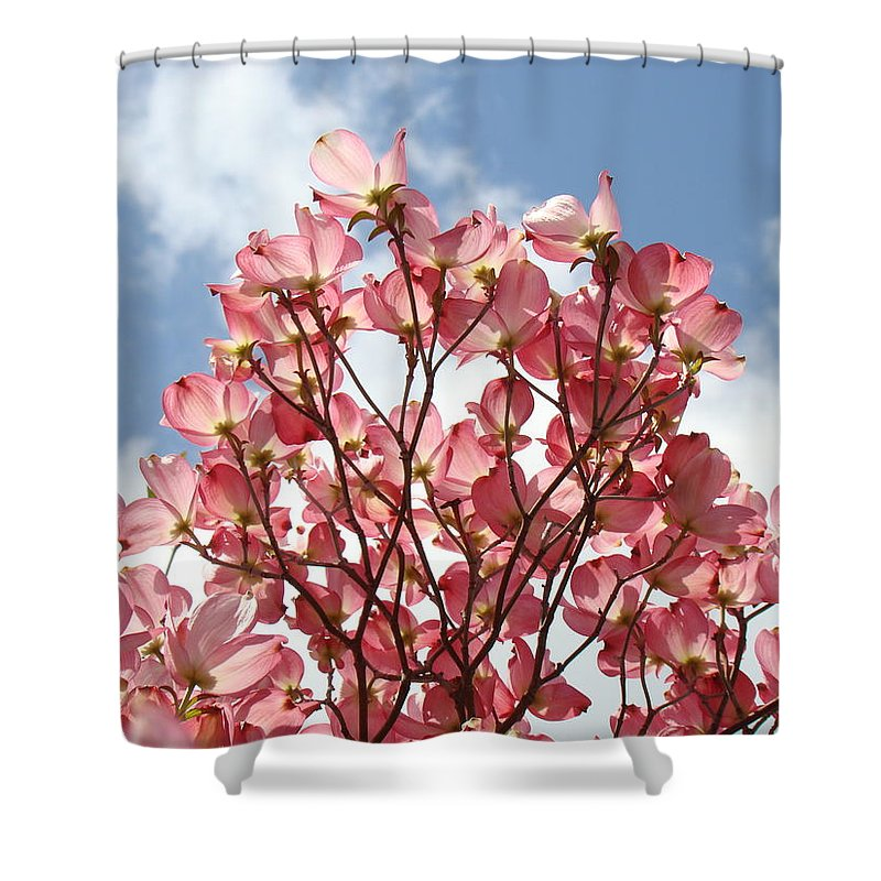 Office Shower Curtain featuring the photograph Office Art Prints Blue Sky Pink Dogwood Flowering 7 Giclee Prints Baslee Troutman by Baslee Troutman
