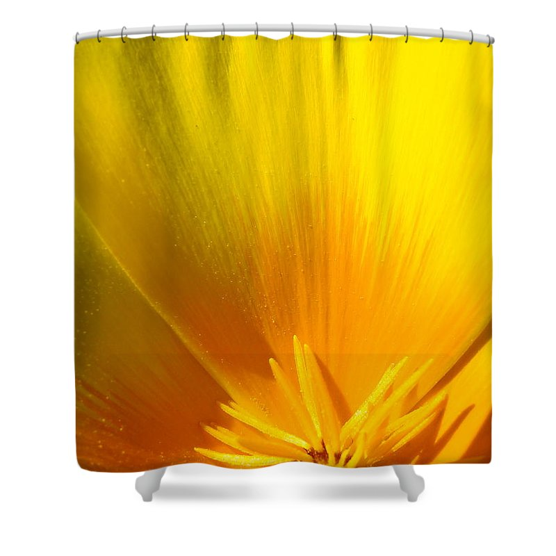 Office Shower Curtain featuring the photograph Office Art Prints Poppies Orange Poppy Flowers 2 Giclee Prints Baslee Troutman by Baslee Troutman