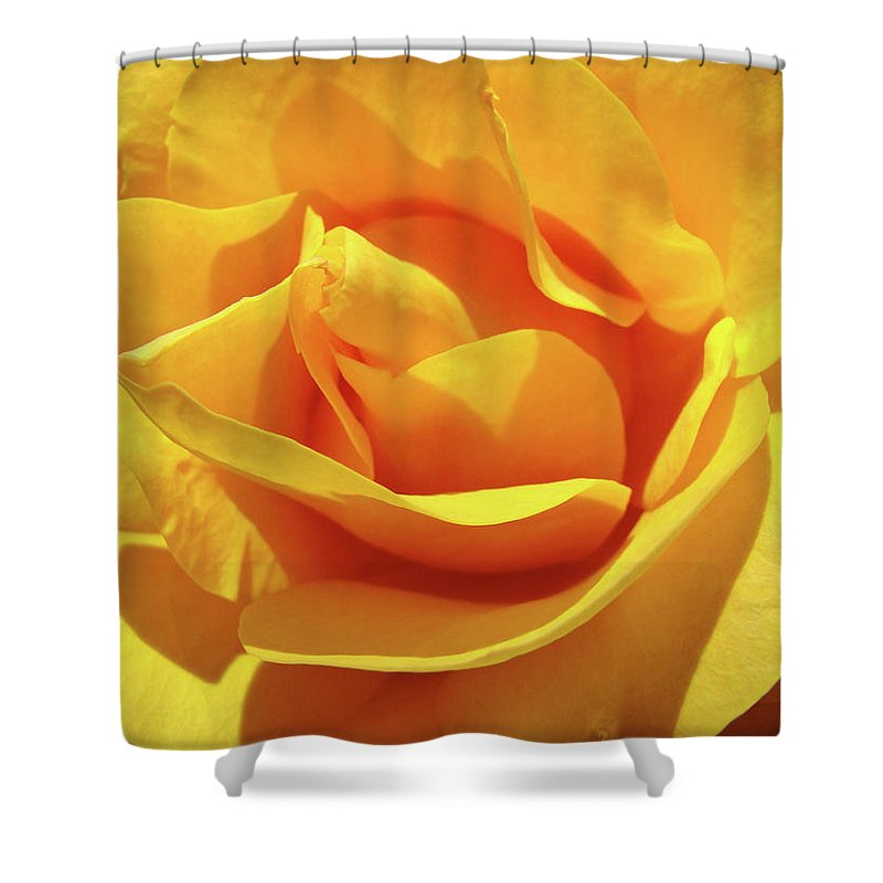 Rose Shower Curtain featuring the photograph Office Art Prints Roses Orange Yellow Rose Flower 1 Giclee Prints Baslee Troutman by Baslee Troutman