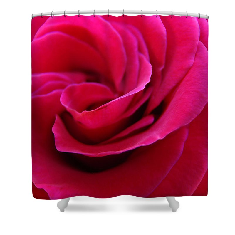 Rose Shower Curtain featuring the photograph Office Art Rose Spiral Art Pink Roses Flowers Giclee Prints Baslee Troutman by Baslee Troutman
