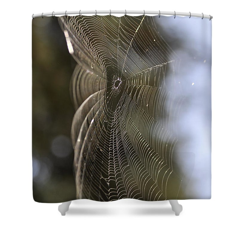 Clay Shower Curtain featuring the photograph Oh What Webs We Weave by Clayton Bruster