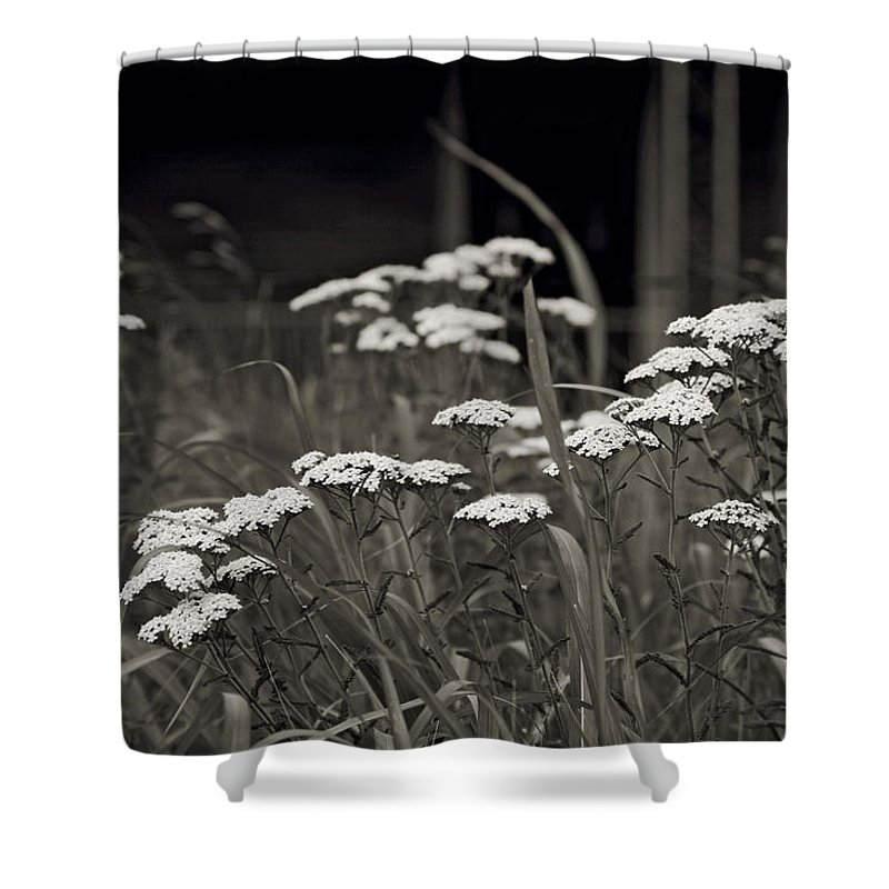 Flowers Shower Curtain featuring the photograph Oklahoma Prairie Flowers by Toni Hopper