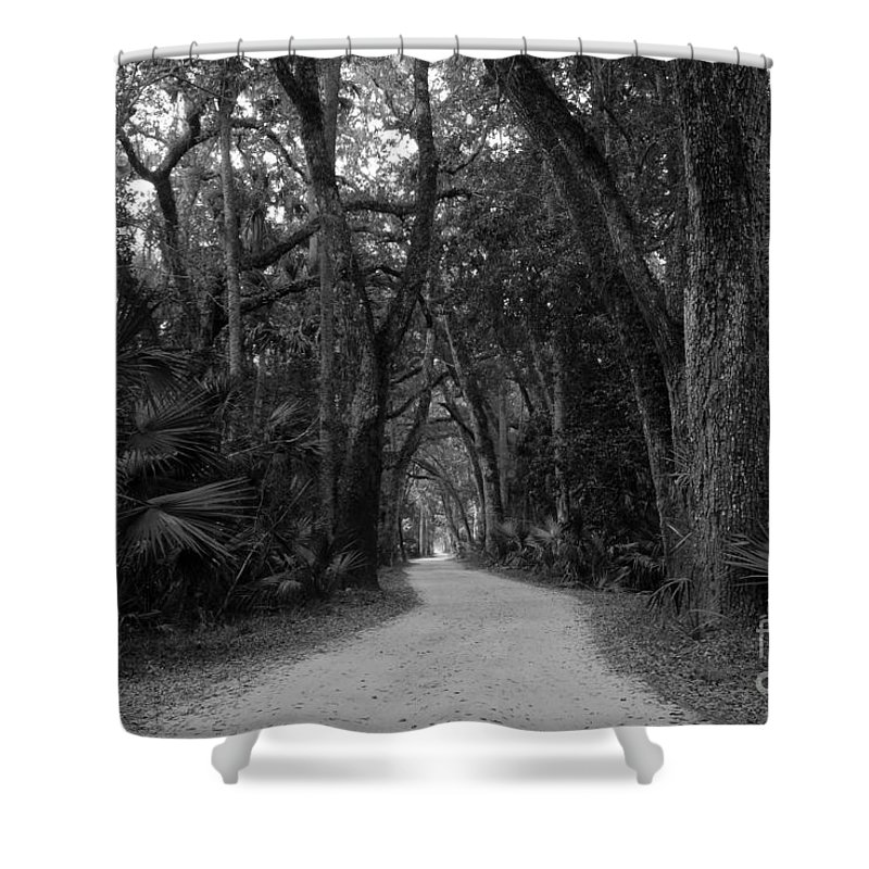 Landscape Shower Curtain featuring the photograph Old Florida by David Lee Thompson