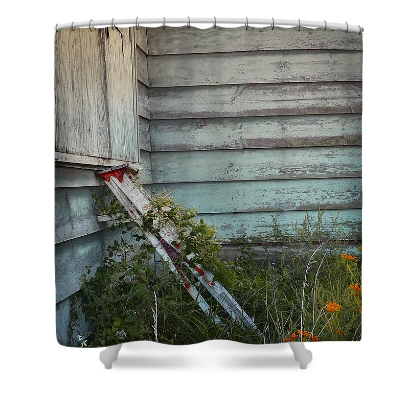 Abandoned Shower Curtain featuring the photograph Old Ladder by Chris Daugherty