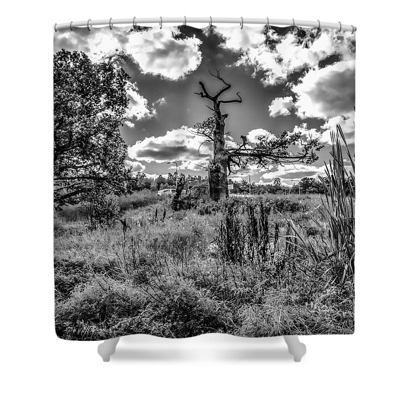 Black And White Shower Curtain featuring the photograph Old Oaks Bw. by Leif Sohlman