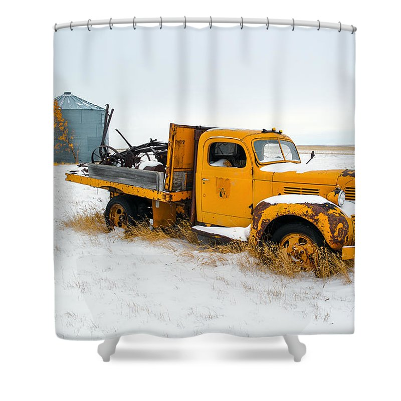pick up lines shower curtains