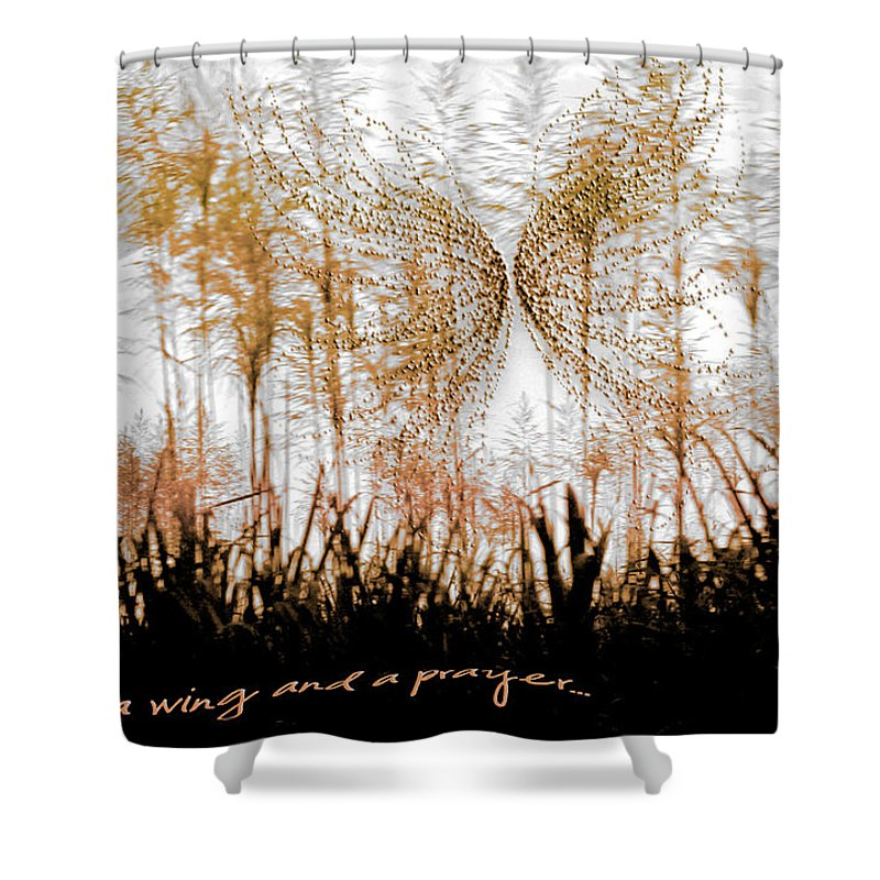 Landscapes Shower Curtain featuring the photograph On A Wing And A Prayer by Holly Kempe