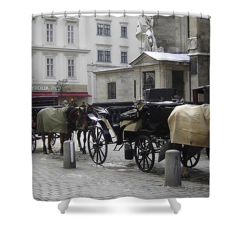 Horses Shower Curtain featuring the photograph On Call by Mary Rogers