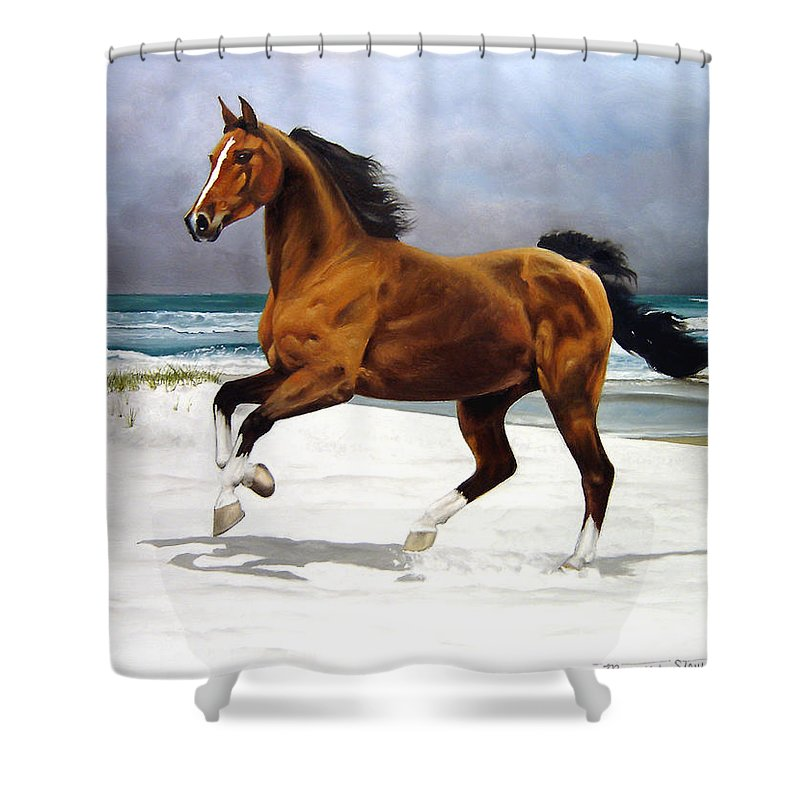 Horse Shower Curtain featuring the painting On The Beach by Marc Stewart