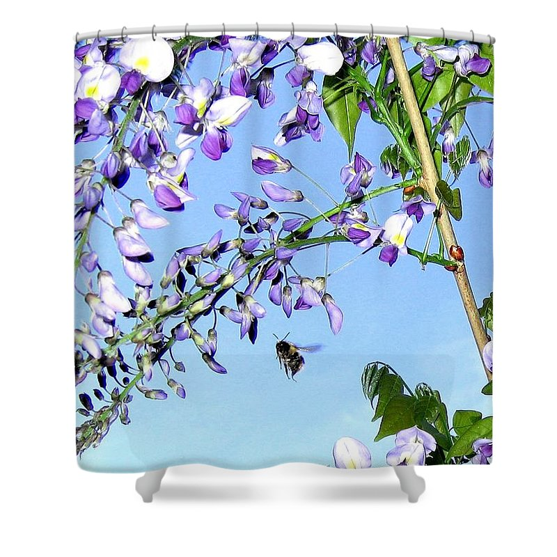 Honeybee Shower Curtain featuring the photograph On The Wing by Will Borden