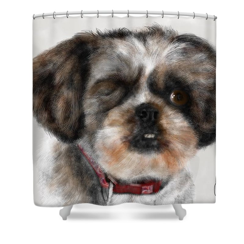 Animal Shower Curtain featuring the painting One Eyed Joe by Lois Ivancin Tavaf