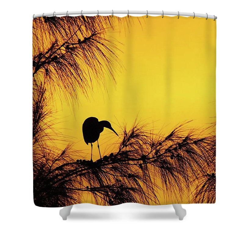 Egret Shower Curtain featuring the photograph One Of A Series Taken At Mahoe Bay by John Edwards