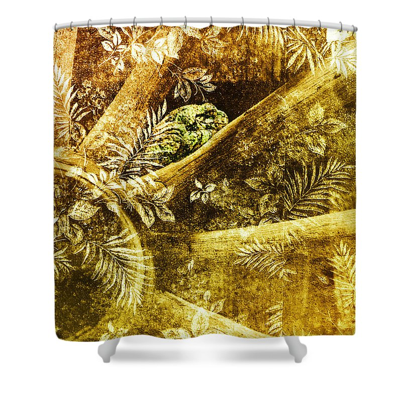 Toad Shower Curtain featuring the photograph One Small Space by Susan Capuano