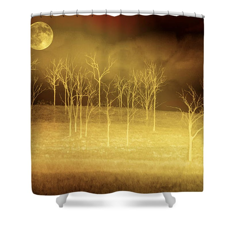 Landscapes Shower Curtain featuring the photograph Only At Night by Holly Kempe