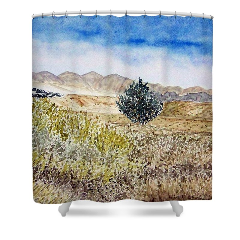Desert Art Shower Curtain featuring the painting Onyo National Forest by Larry Wright