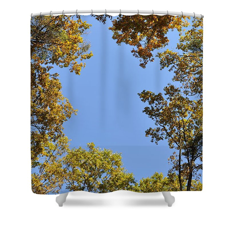Oaks Shower Curtain featuring the photograph Opening by Georgeta Blanaru