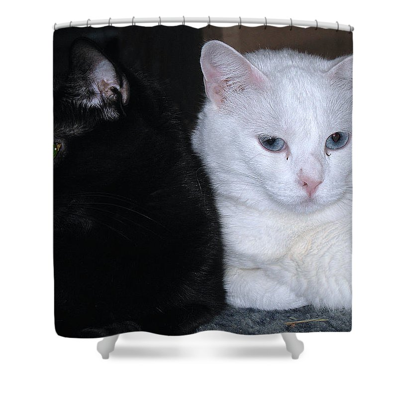 Animal Shower Curtain featuring the photograph Opposites by Kenneth Albin