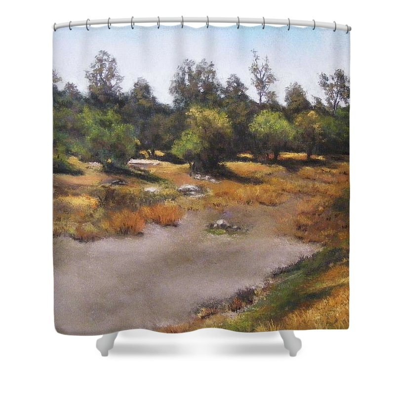 Optimism Shower Curtain featuring the painting Optimism by Darlene Jaeger