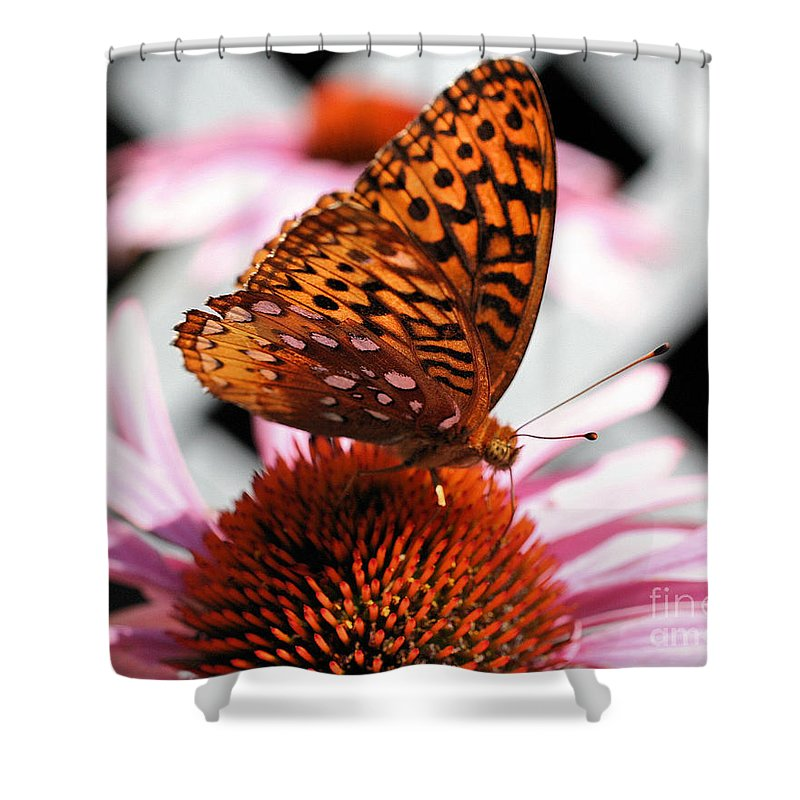 Butterfly Shower Curtain featuring the photograph Orange Butterfly by Smilin Eyes Treasures