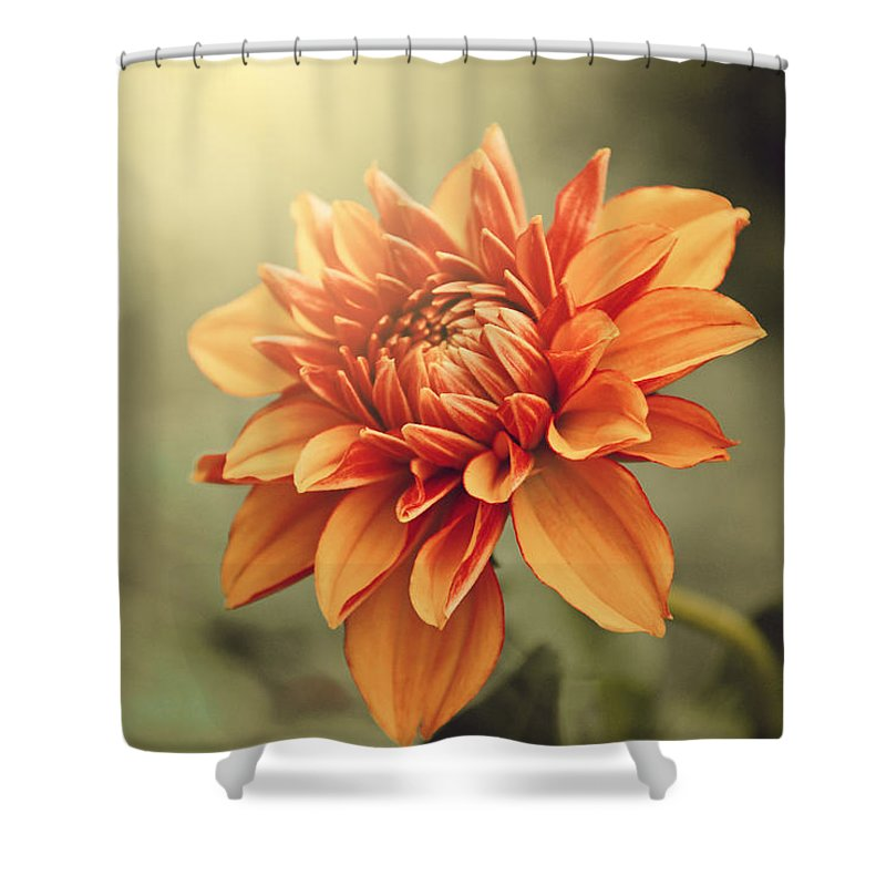 Dahlia Shower Curtain featuring the photograph Orange Dahlia by Juliana RW
