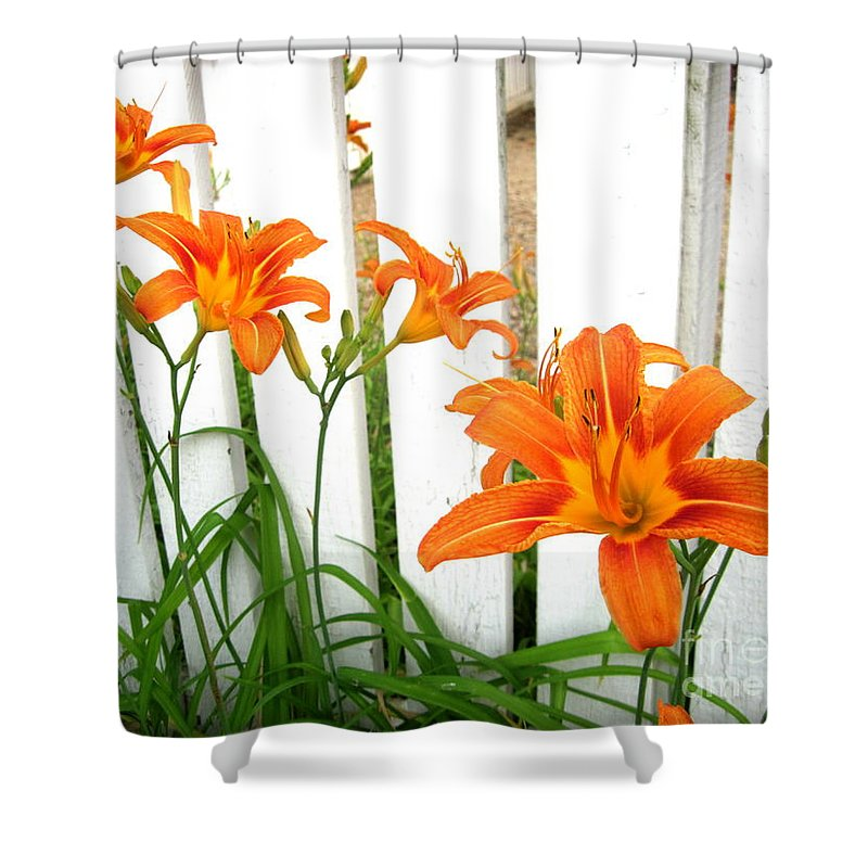 Orange Shower Curtain featuring the photograph Orange Daylily At Colonial Williamsburg by Camryn Zee Photography