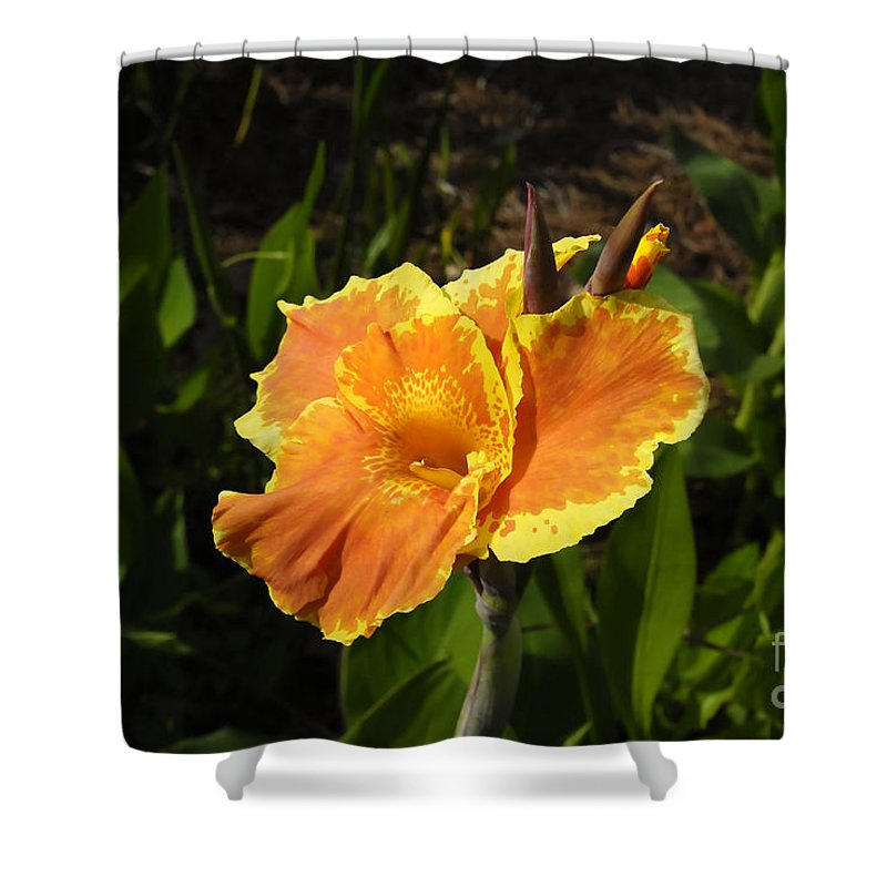 Flower Shower Curtain featuring the photograph Orange Flower by David Lee Thompson