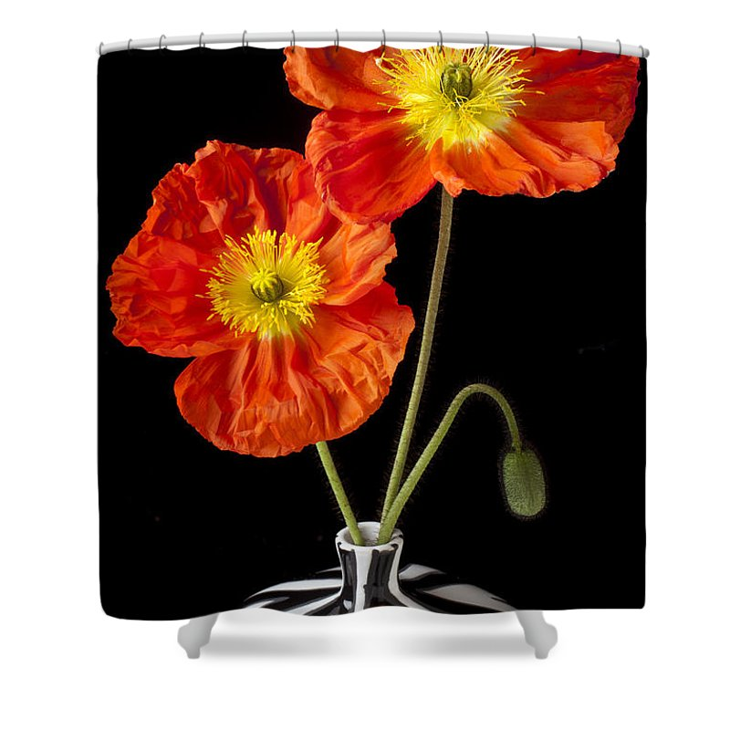 Orange Iceland Poppy Shower Curtain Featuring The Photograph Poppies By Garry Gay