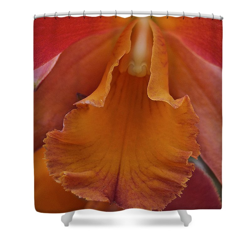 Orange Shower Curtain featuring the photograph Orange Orchid 3 by Michael Peychich