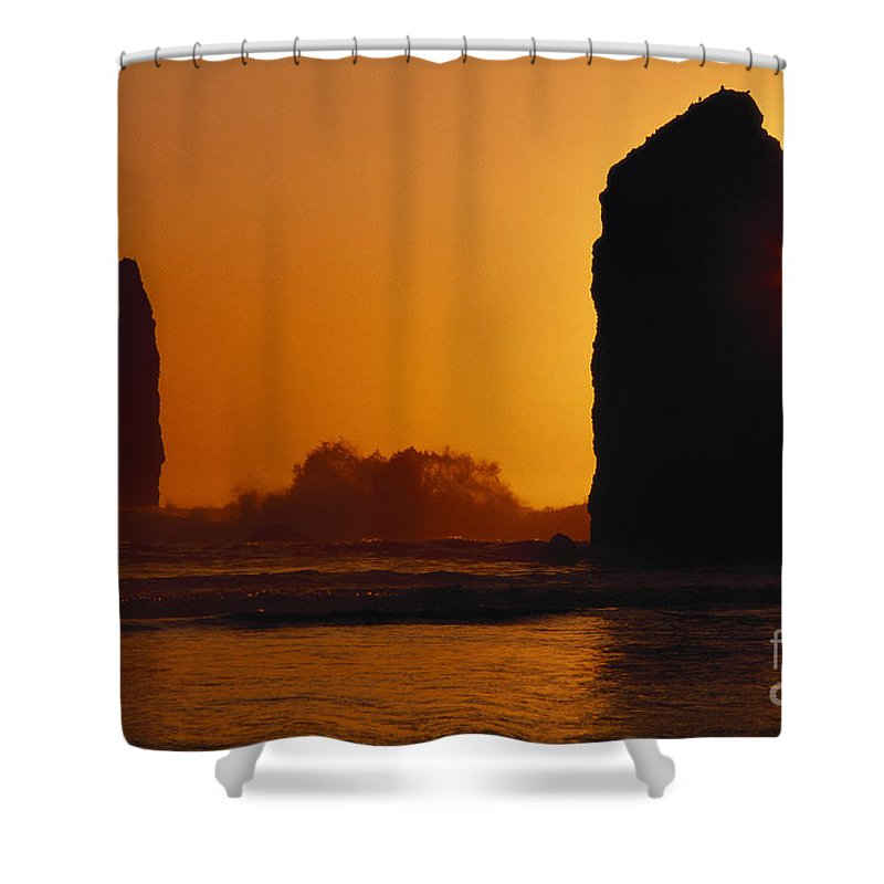 Afternoon Shower Curtain featuring the photograph Oregon Coast by Ali ONeal - Printscapes