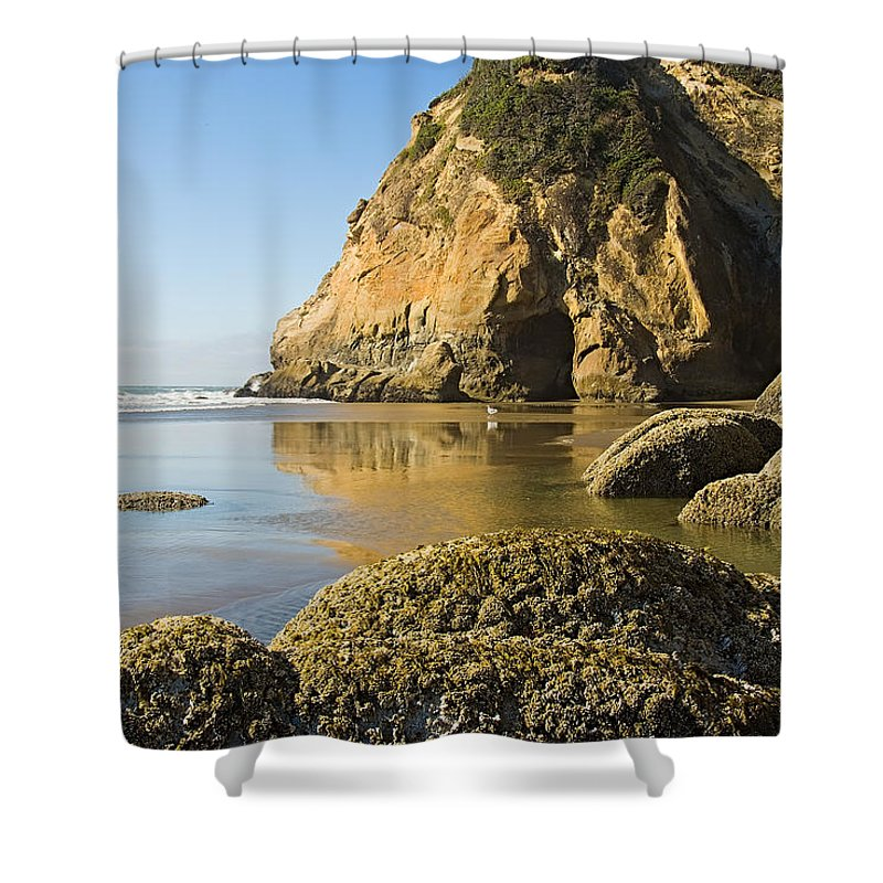 Oregon Shower Curtain featuring the photograph Oregon Seascape by Terry Wieckert