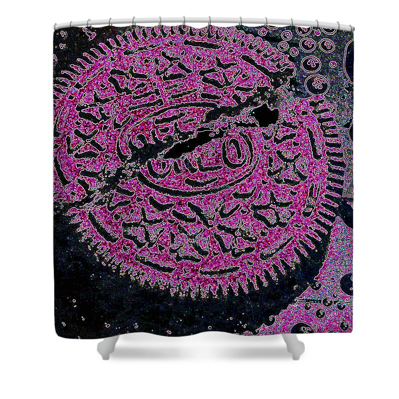 Pink Shower Curtain featuring the photograph Oreo In Pink by Nancy Mueller