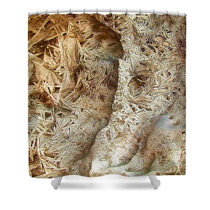 Oriented Strands Shower Curtain featuring the photograph Oriented Strands by Ron Bissett