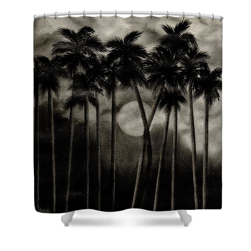 Original Moonlit Palm Trees Shower Curtain featuring the drawing Original Moonlit Palm Trees by Larry Lehman