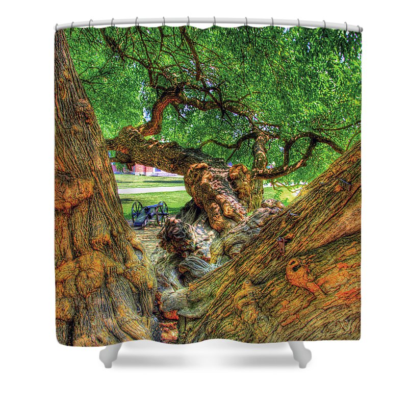 Historic Shower Curtain featuring the photograph Osage Orange by Sam Davis Johnson