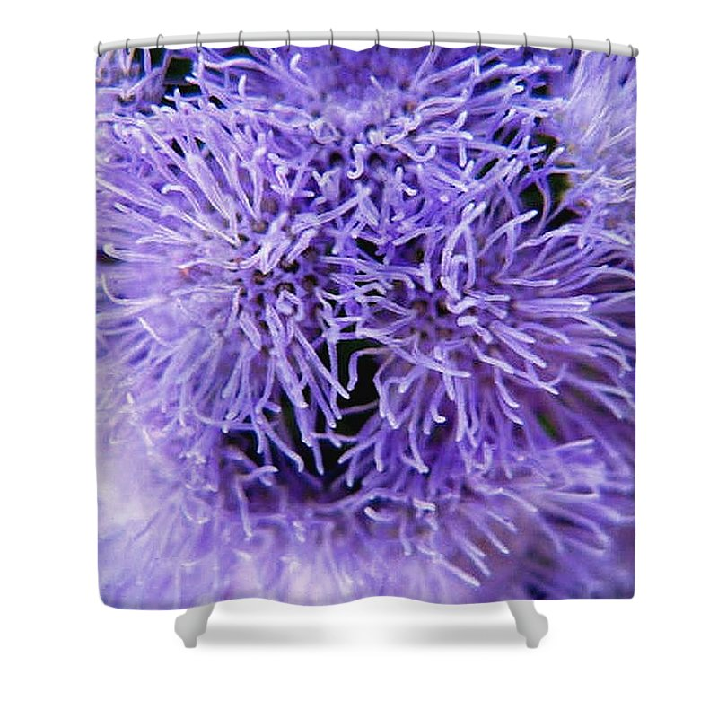 Floral Shower Curtain featuring the photograph Out Of This World by Rhonda Barrett