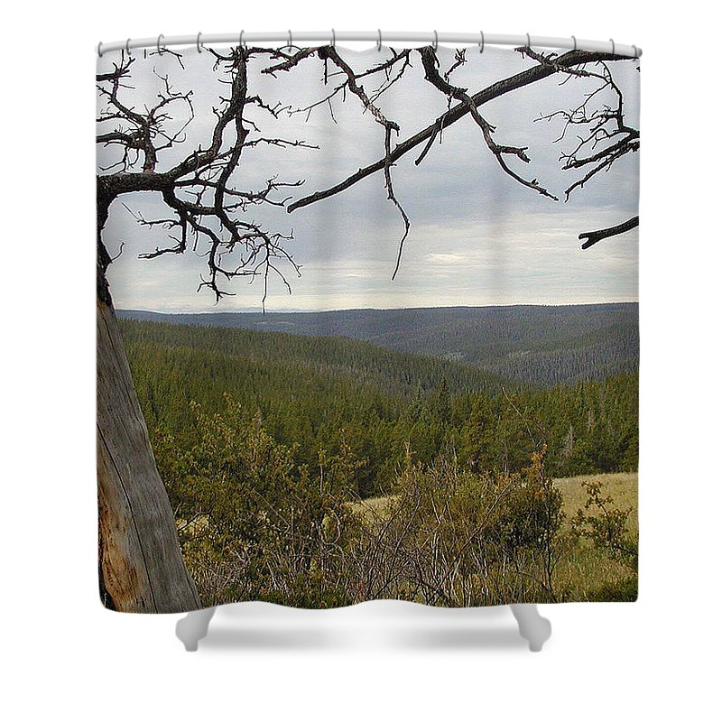Canyon Shower Curtain featuring the photograph Overseeing The Canyon by Forrest Shaw