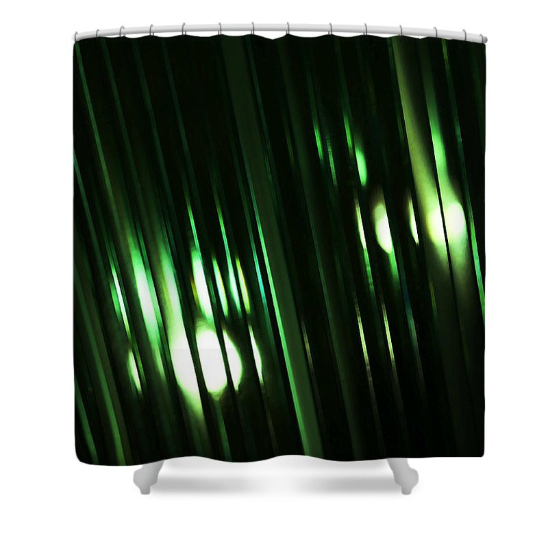 Glass Shower Curtain featuring the photograph Oz by Linda Shafer