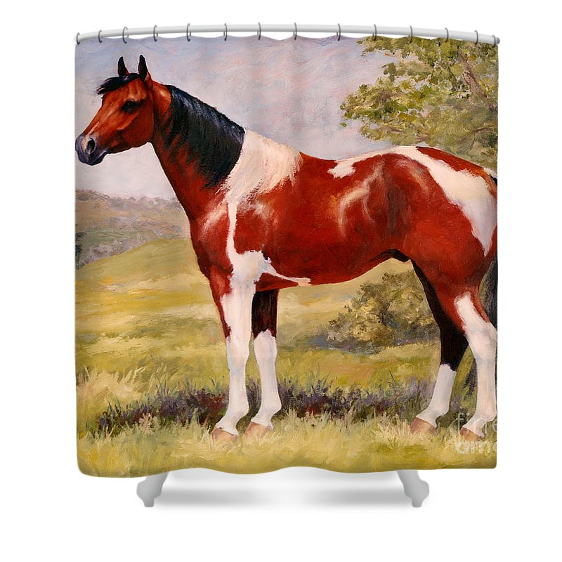Paint Shower Curtain featuring the painting Paint Horse Gelding Portrait Oil Painting - Gizmo by Kim Corpany