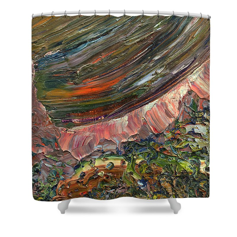Abstract Shower Curtain featuring the painting Paint Number 10 by James W Johnson