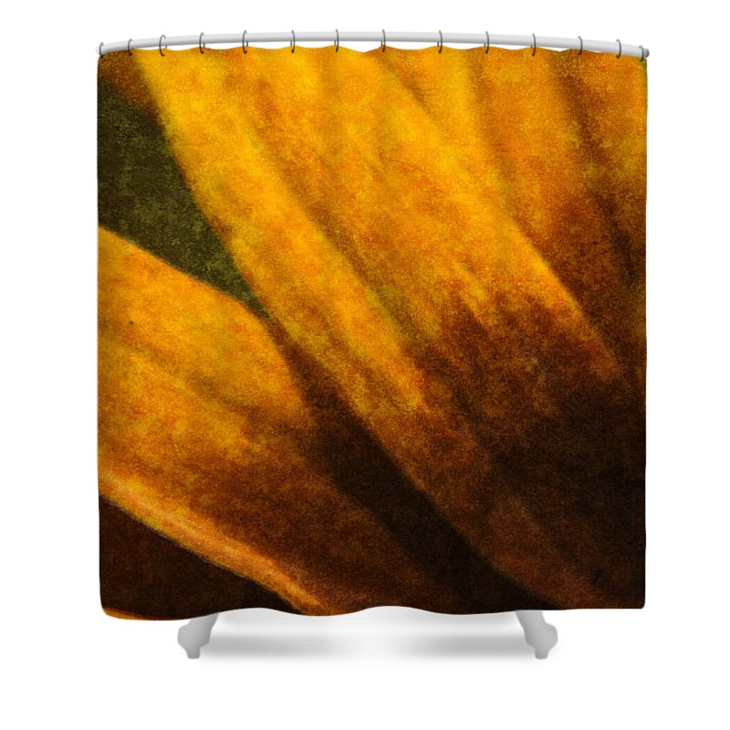 Painted Shower Curtain featuring the digital art Painted Daisy Sunburst by Teresa Mucha