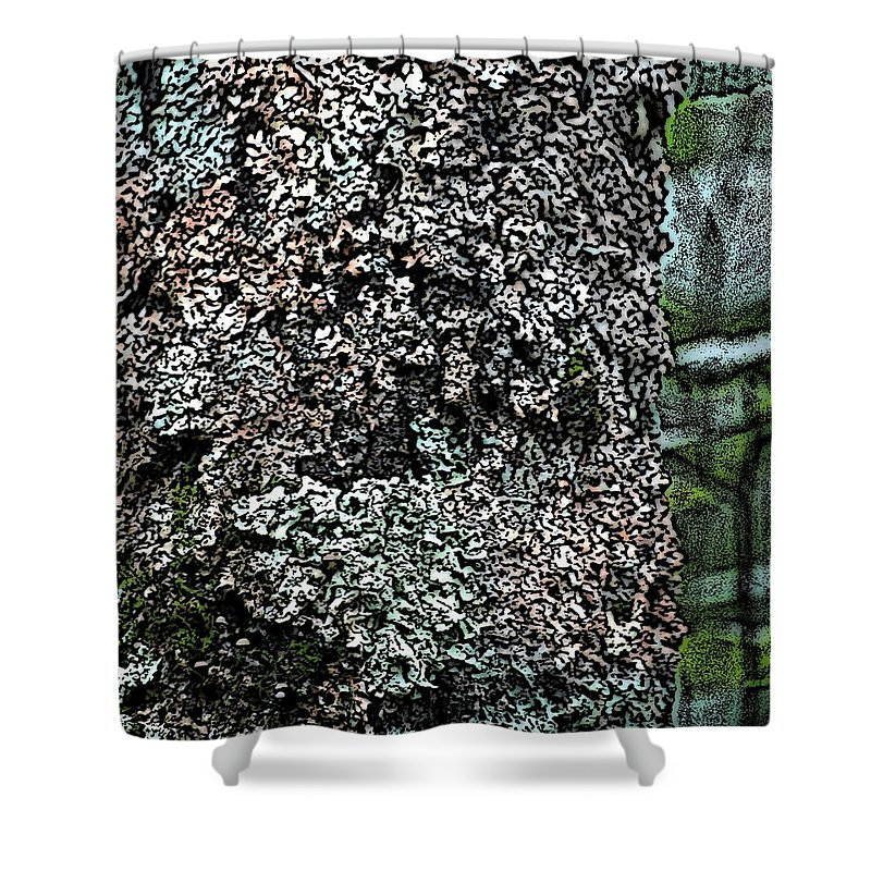Digital Photograph Shower Curtain featuring the photograph Painted Treebark Woodcut by David Lane