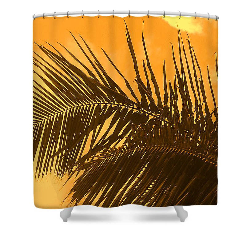 Palm Shower Curtain featuring the photograph Palm Frond Sunset by Ian MacDonald