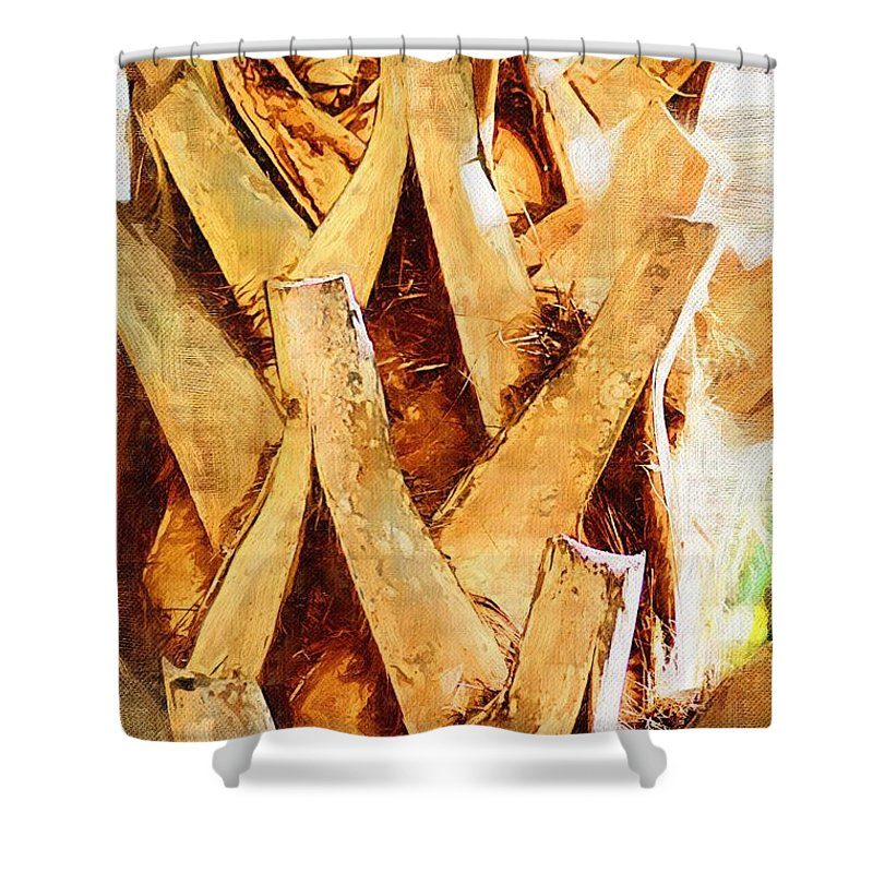 Palm Shower Curtain featuring the photograph Palm Tree Bark by Donna Bentley