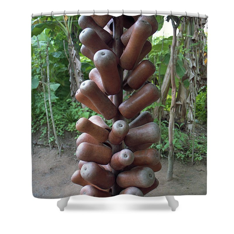Gourds Shower Curtain featuring the photograph Palm Wine Gourds by Muyiwa OSIFUYE
