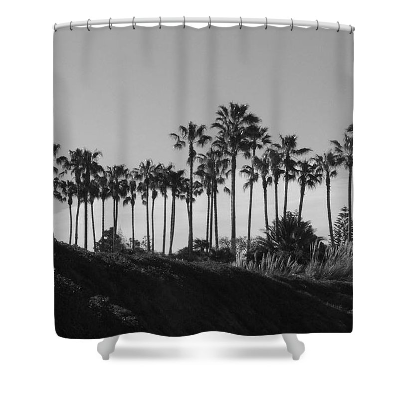 Landscapes Shower Curtain featuring the photograph Palms by Shari Chavira