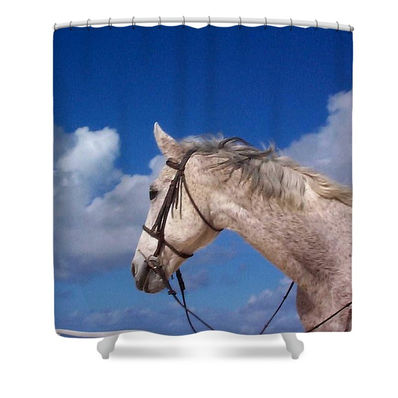 Charity Shower Curtain featuring the photograph Pancho by Mary-Lee Sanders